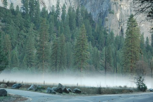 yosemite national park fog
