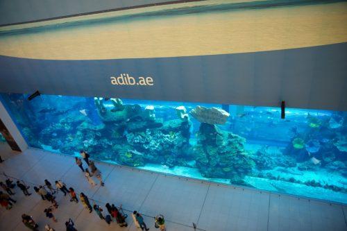 ドバイモールの中にある水族館