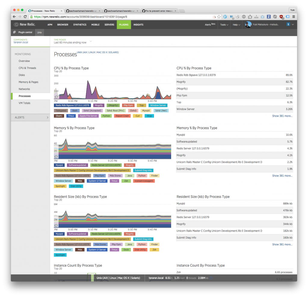 new relic  processes